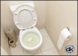 blocked toilet drain