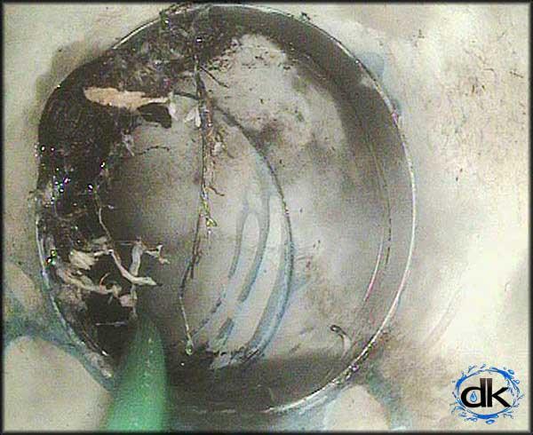 cctv drain inspection of broken drain