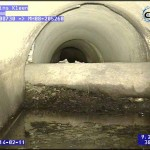 CCTV drain inspection / Pipe Survey - drain running through centre of pipe.