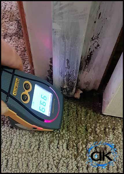moisture measuring